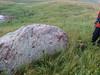 Buffalo Rub rock. School Sections, Medina ND