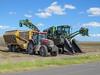 Cane Harvesting, Rio Hondo, TX