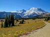 Sunrise Lodge, Mt Ranier National Park, WA