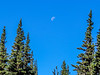 Sunrise Lodge, Mt Ranier National Park, WA