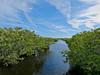 Merritt Island NWR, Titusville FL