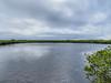 Merritt Island NWR, Titusville, FL