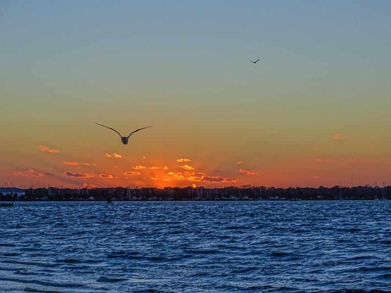 Merritt Island, FL
