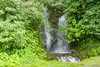 Waterfall beside the road