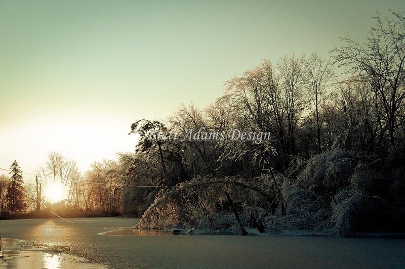 Frozen Morning 2 - Colonie, NY
