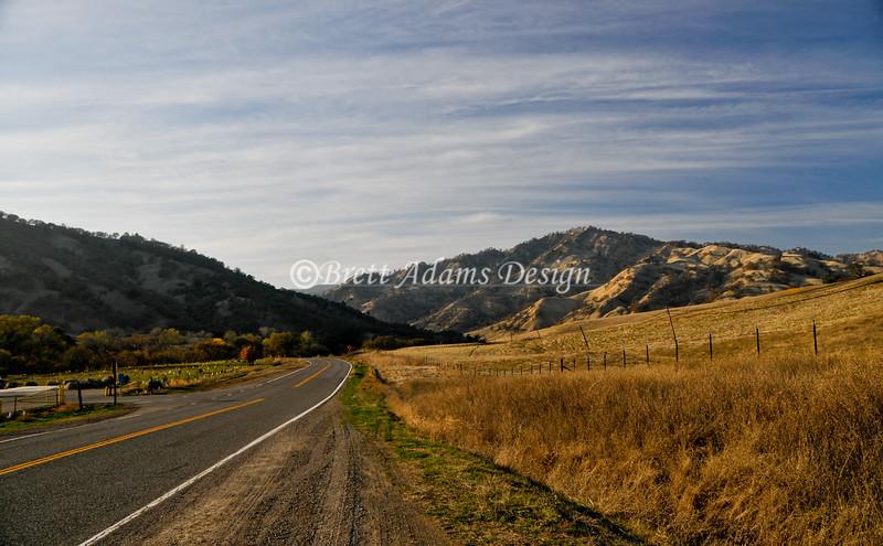 Rt128, Napa Valley CA