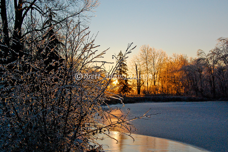 Frozen Pond Sunrise. Colonie, NY