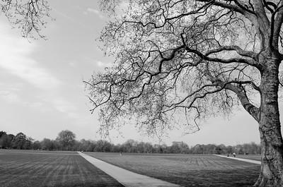 Hyde Park; London, England