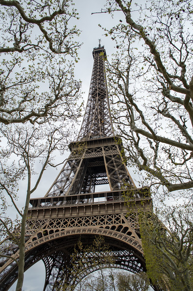 Eiffel Tower; Paris, France