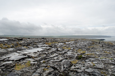 Burren National Park; Ireland