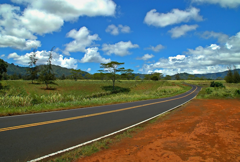 Down The Road<br /> Kipu Road, Kauai