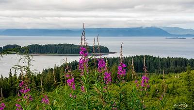 Alaska - July 2018