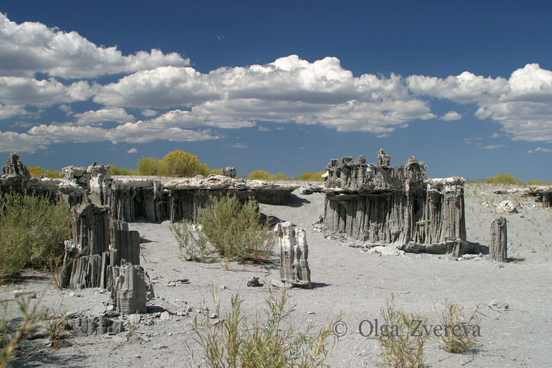 <p>Tufa at Mono Lake Tufa State Reserve, California, USA</p>