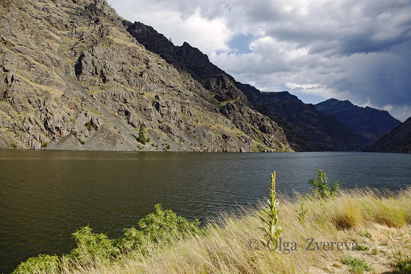 <p>Hells Canyon, Oregon, USA</p>