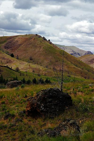 <p>Eastern Oregon Landscape, Oregon, USA</p>