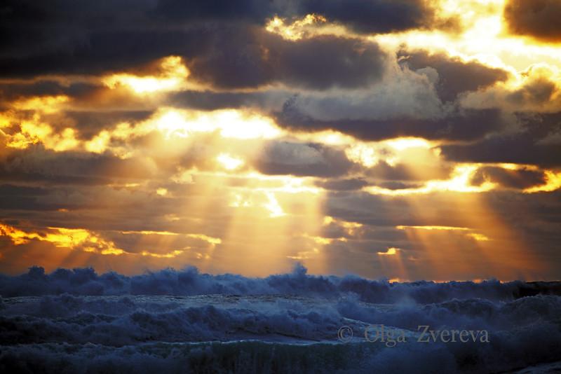 <p>Blue Waves. Pacific ocean, Oregon, USA</p>