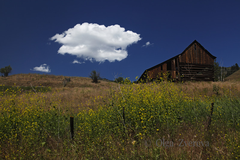 <p>Barn. Hells Canyon, Oregon, USA</p>