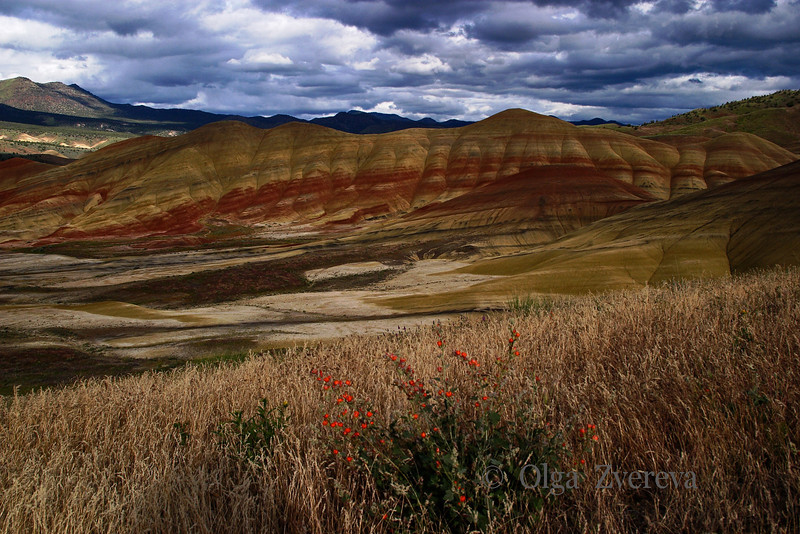 <p>Painted Hills, John Day Fossil Beds National Monument, Oregon, USA</p>