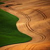 <p>Curves. Palouse, Washington, USA</p>