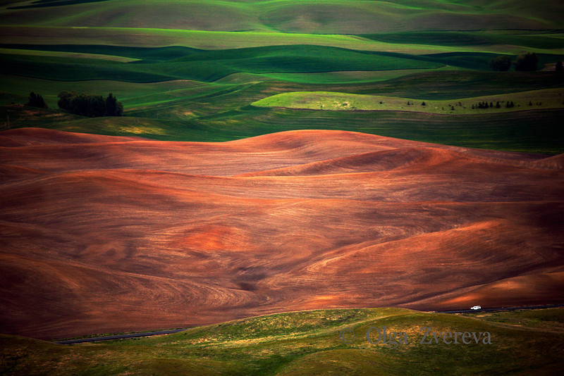 <p>Palouse, Washington, USA</p>