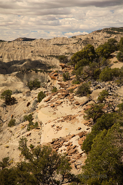 <p>The Blues, Scenic Byway 12, Utah, USA</p>