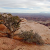 <p>Island in the Sky, Canyonlands National Park, Utah, USA.</p>