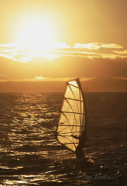 <p>Sailing at Puget Sound, Washington, USA</p>