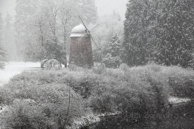 <p>Snowing at Marymoor Park, Redmond, Washington, USA</p>