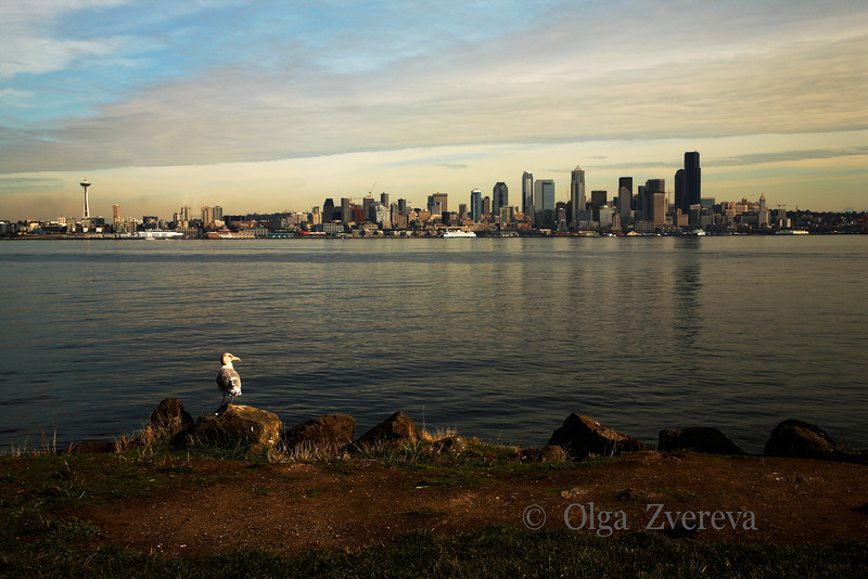 <p>Seattle view from Alki Point. Washington, USA</p>