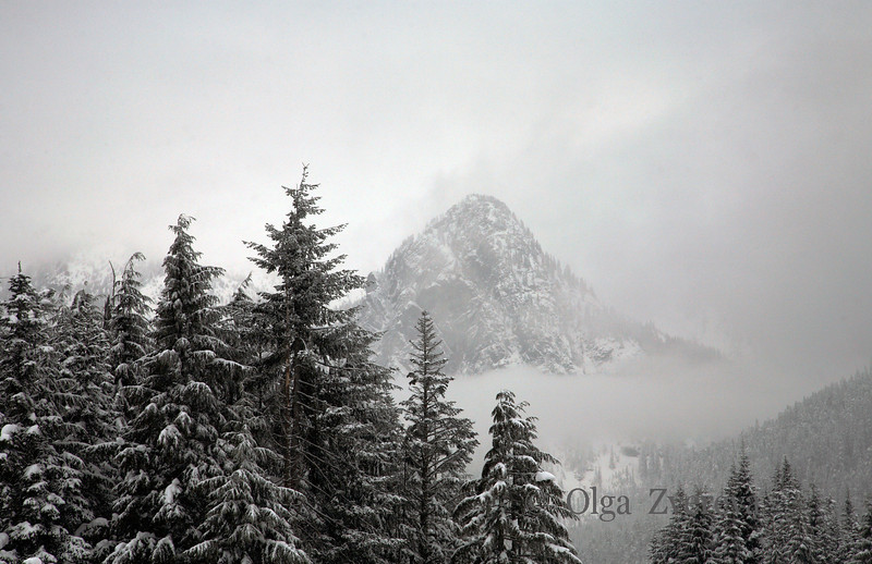 <p>The fog and snow clouds at Snoqualmie Pass in the Cascade Mountains of Washington, USA</p>