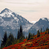 <p>Autumn at Mount Rainier National Park, Washington, USA</p>