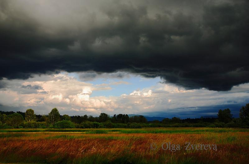 <p>Approaching rain storm, Redmond, Washington, USA</p>