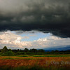 <p>Approaching rain storm, Redmond, Washington, USA</p>