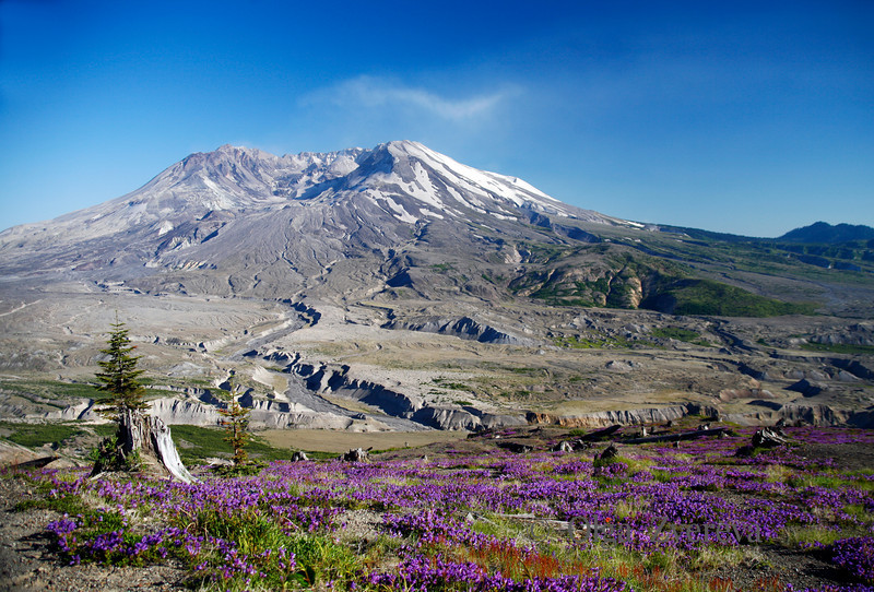<p>Mount St Helens is an active volcano located in Washington, USA. At morning, May 18, 1980, Mount St. Helens erupted. The eruption lasted 9 hours, but Mount St. Helens and the surrounding landscape were dramatically changed within moments. After years of slunber pillowy clouds of steam gushed out of Mount St. Helens in October 2004.</p> <p>Mount St Helens National Volcanic Monument, Washington, USA</p>