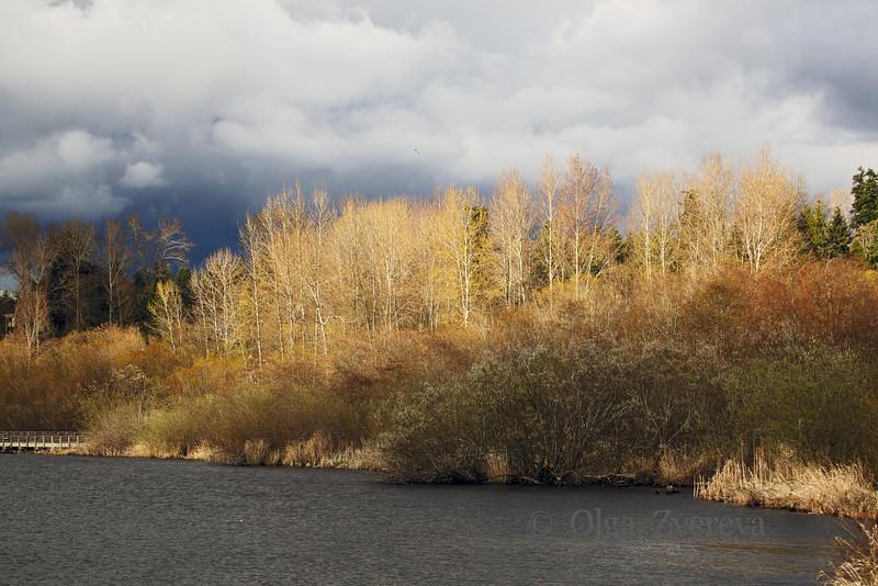 <p>Spring. Lake Washington, Kirkland, Washington, USA</p>