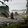 <p>Ruby beach, Olympic National Park, Washington, USA</p>
