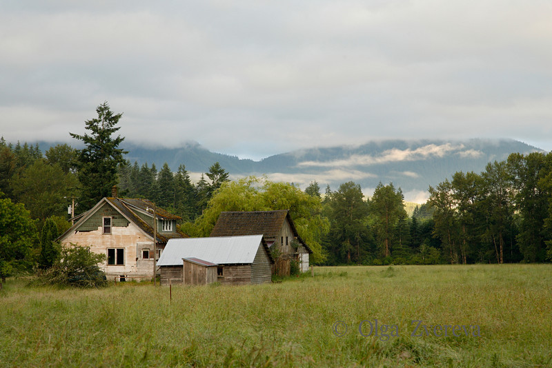 <p>Morning at the farm near Mount Rainier National Park, Washington, USA</p>