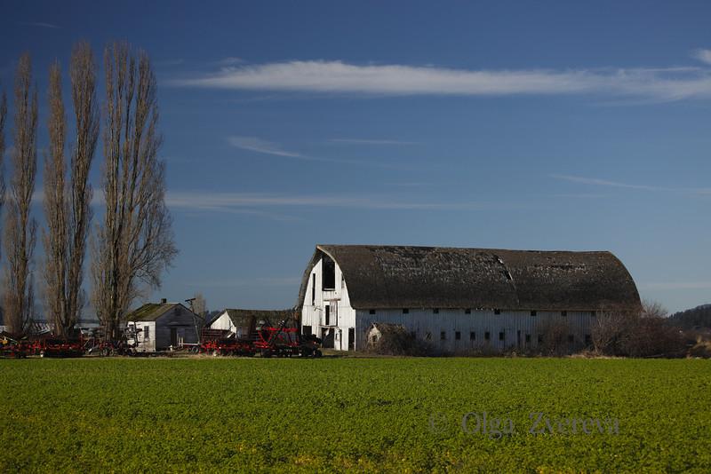 <p>Farm at Skagit Valley, Washington, USA</p>