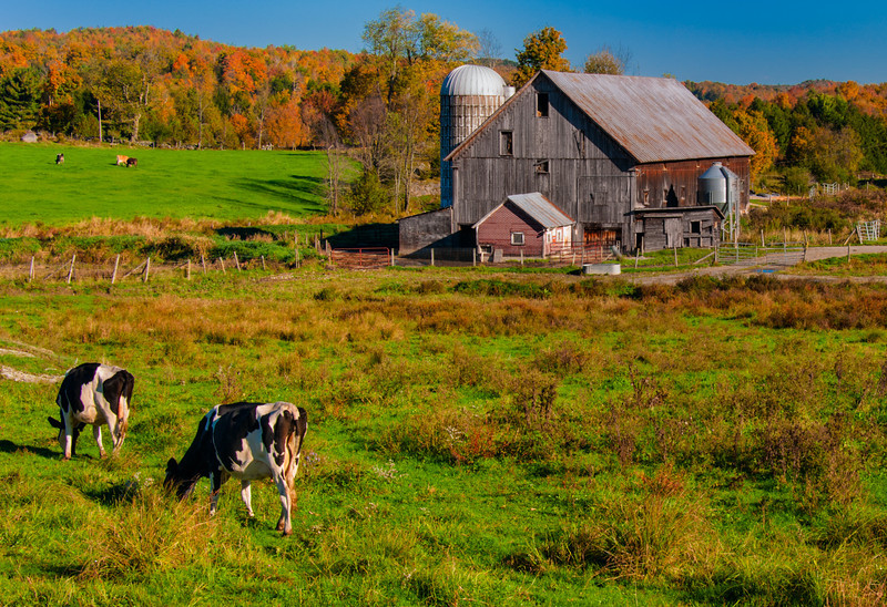 Farm; East Fairfield, Vermont