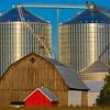 Zwerk Farms