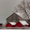 Snowy Red Barns