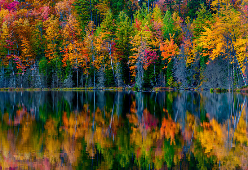 Red Jack Lake,Reflection; Hiawatha National Forest