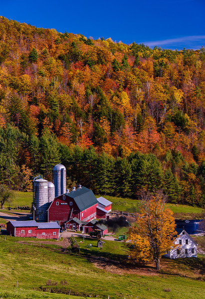 Hillside Acres Farm; Barnet Center, VT