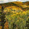Santa Fe Ski Basin