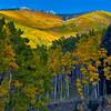 Santa Fe Ski Basin, Fall