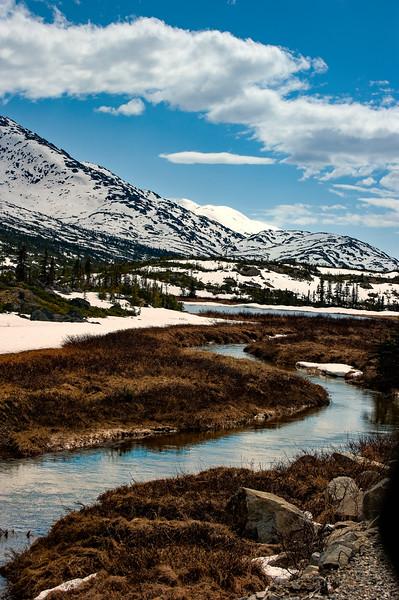 Snowy Scenic, White Pass