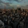 Tokyo Dawn