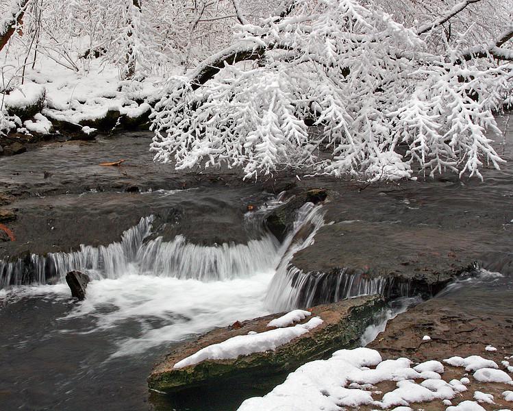 Snowy Tree over Falls - Rutledge Falls Natural Area - Tullahoma, TN