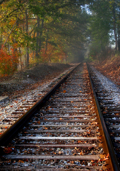Misty Fall Rails