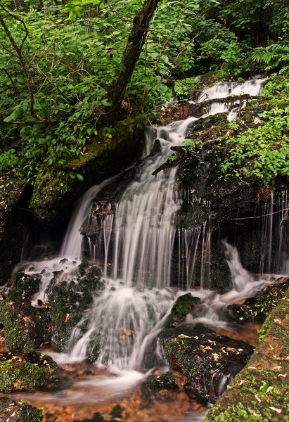 Small auxillary falls @ Rutledge Falls Natural Area - Tullahoma, TN